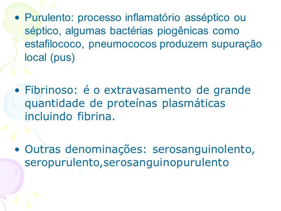 Purulento: processo inflamatório asséptico ou séptico, algumas bactérias piogênicas como estafilococo, pneumococos produzem supuração local (pus)