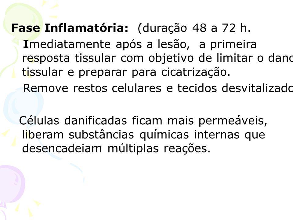 Fase Inflamatória: (duração 48 a 72 h.