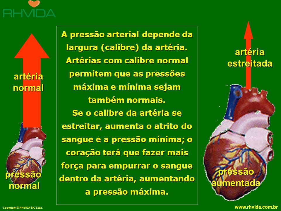 A pressão arterial depende da largura (calibre) da artéria.