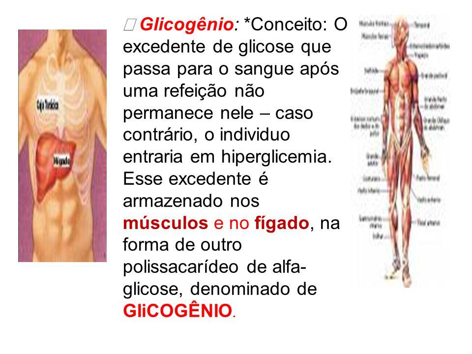 Þ Glicogênio: *Conceito: O excedente de glicose que passa para o sangue após uma refeição não permanece nele – caso contrário, o individuo entraria em hiperglicemia. Esse excedente é armazenado nos músculos e no fígado, na forma de outro polissacarídeo de alfa- glicose, denominado de GIiCOGÊNIO.