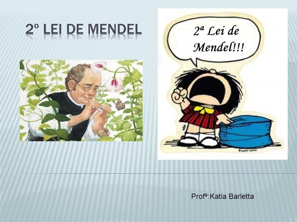 2º Lei de Mendel Profª:Katia Barletta