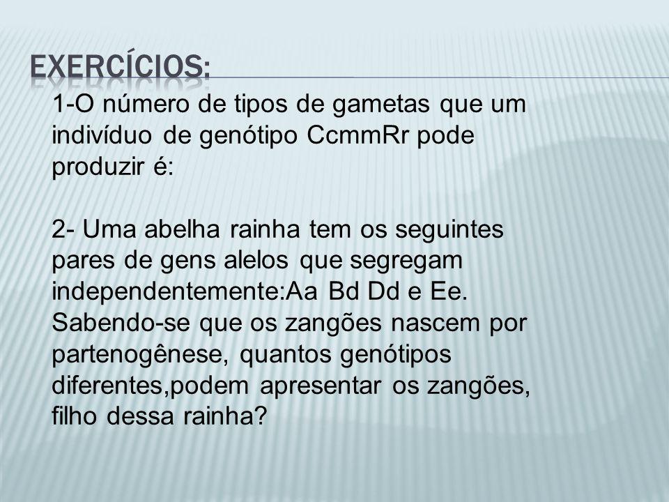 Exercícios: 1-O número de tipos de gametas que um indivíduo de genótipo CcmmRr pode produzir é: