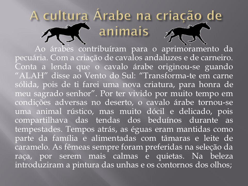 A cultura Árabe na criação de animais