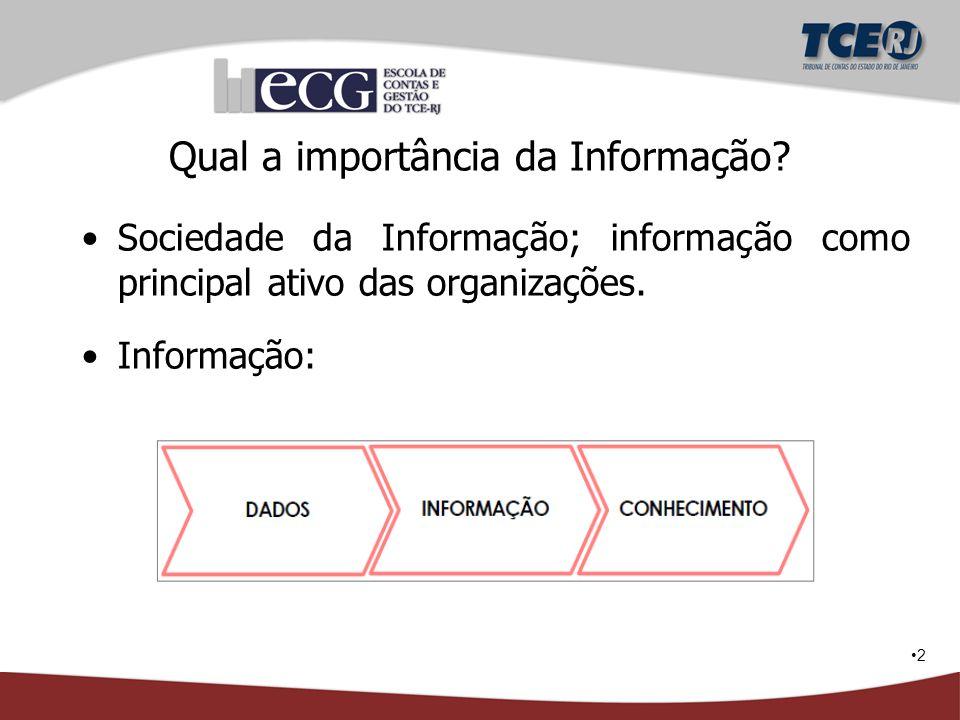 Qual a importância da Informação