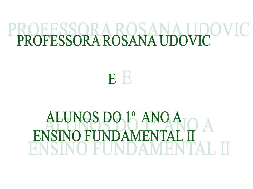 PROFESSORA ROSANA UDOVIC