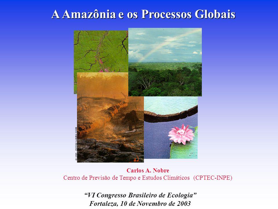 A Amazônia e os Processos Globais