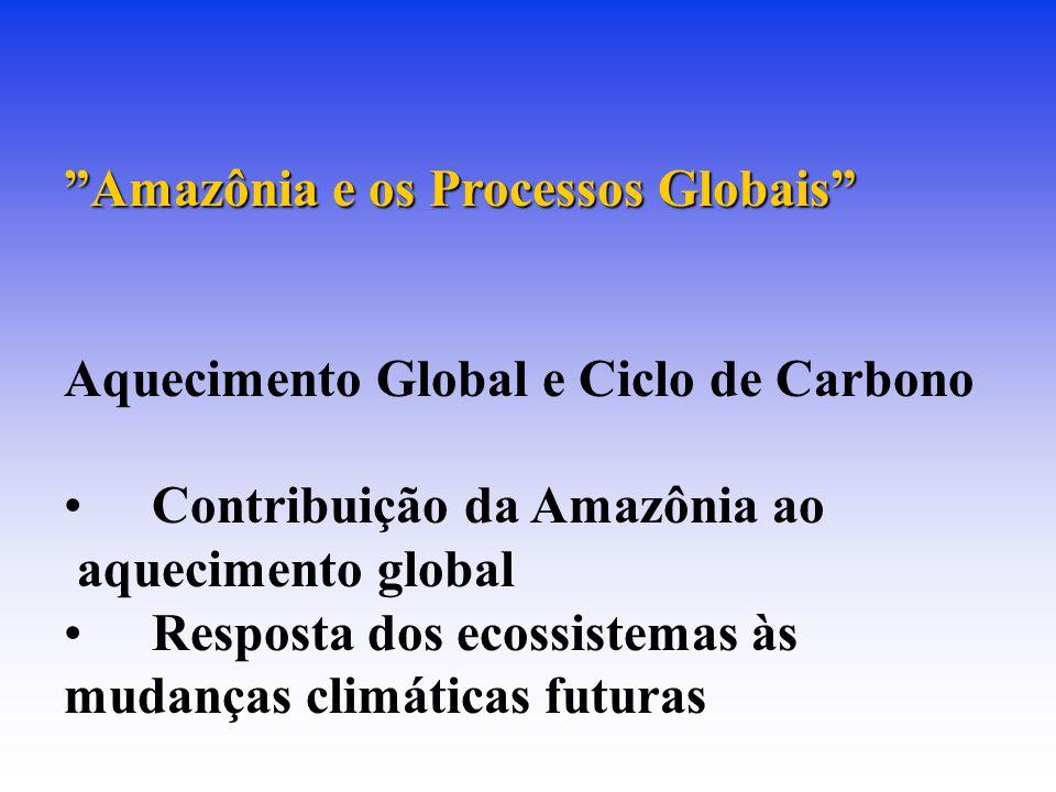 Amazônia e os Processos Globais
