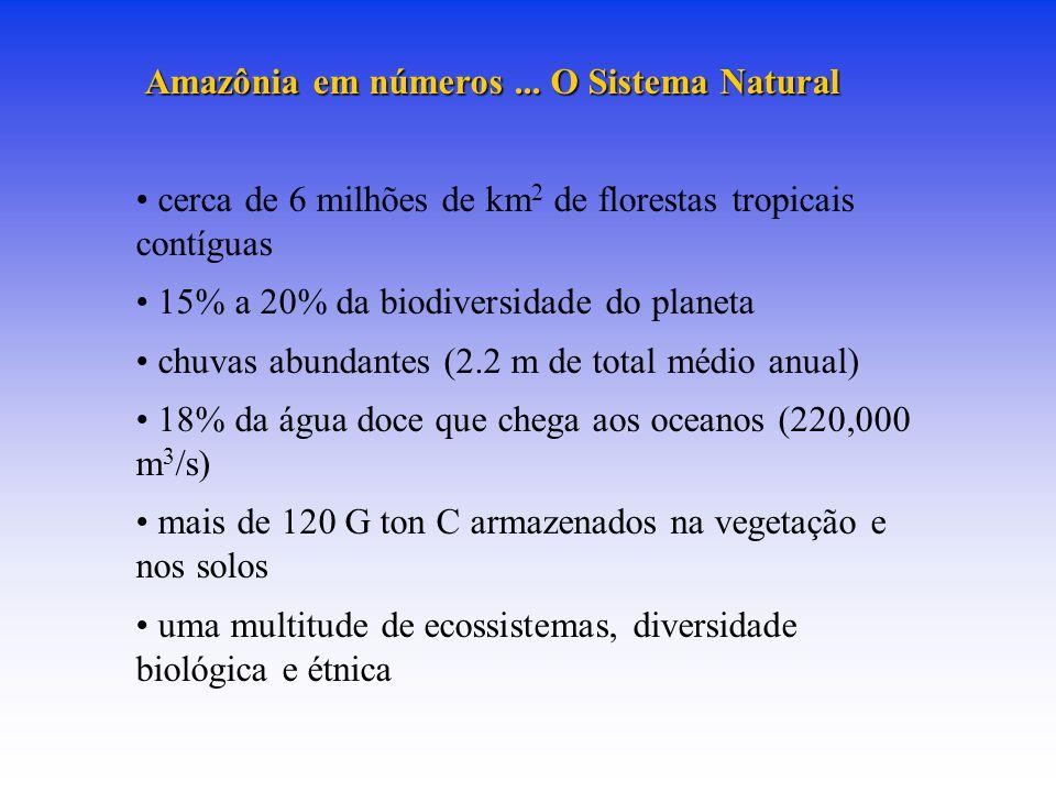 cerca de 6 milhões de km2 de florestas tropicais contíguas
