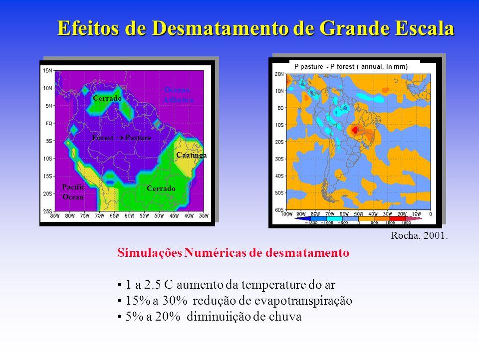 Efeitos de Desmatamento de Grande Escala