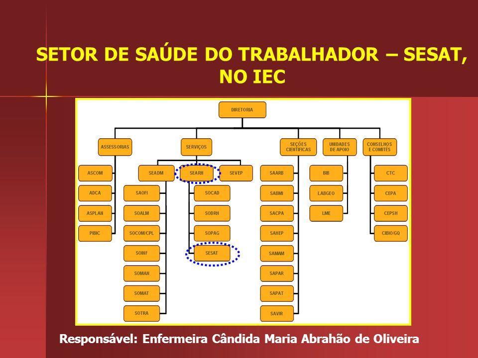 SETOR DE SAÚDE DO TRABALHADOR – SESAT, NO IEC