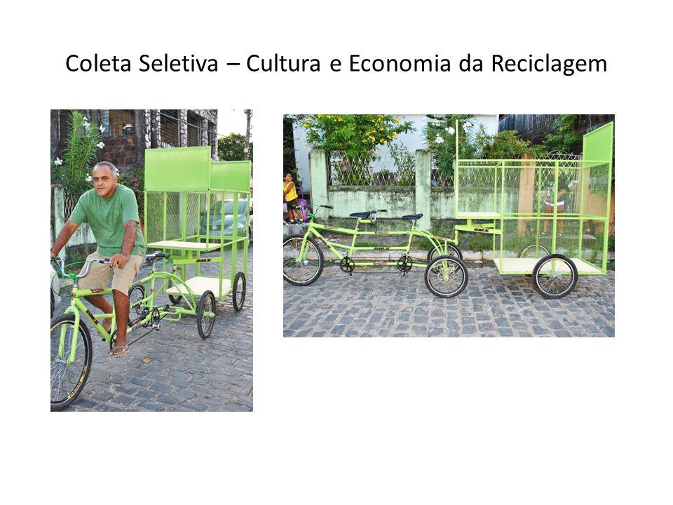 Coleta Seletiva – Cultura e Economia da Reciclagem