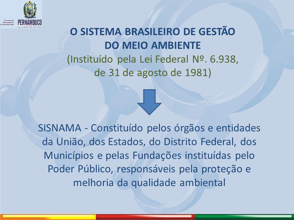 O SISTEMA BRASILEIRO DE GESTÃO DO MEIO AMBIENTE