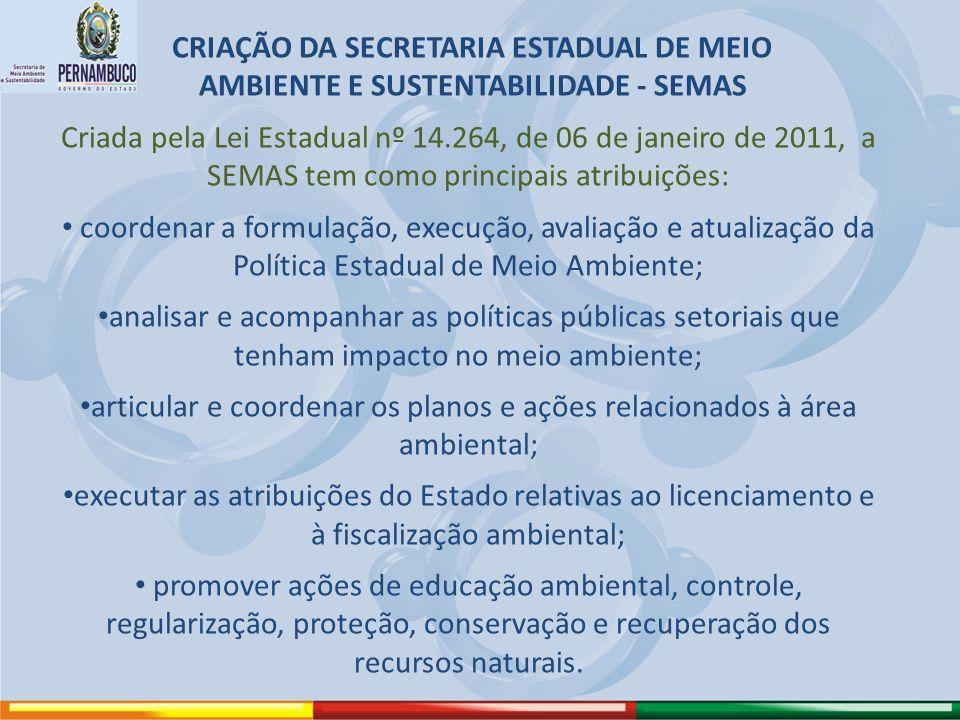 articular e coordenar os planos e ações relacionados à área ambiental;