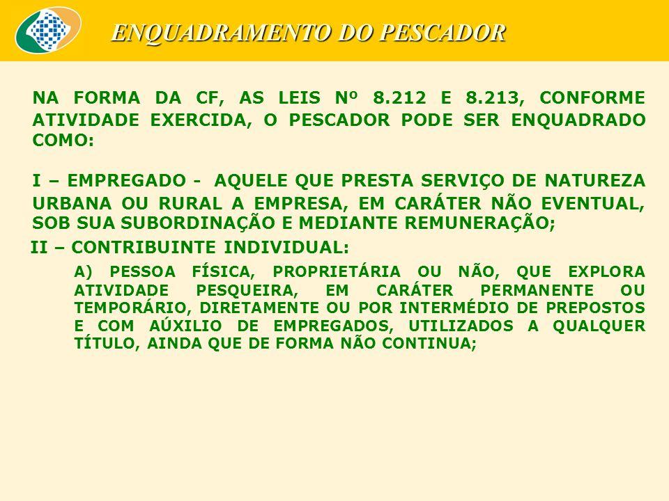 ENQUADRAMENTO DO PESCADOR