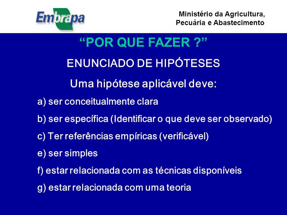 ENUNCIADO DE HIPÓTESES Uma hipótese aplicável deve: