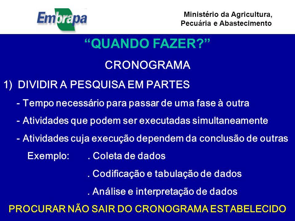 PROCURAR NÃO SAIR DO CRONOGRAMA ESTABELECIDO
