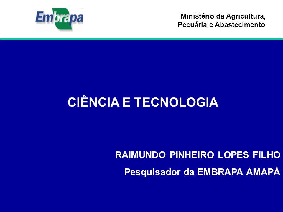 RAIMUNDO PINHEIRO LOPES FILHO Pesquisador da EMBRAPA AMAPÁ