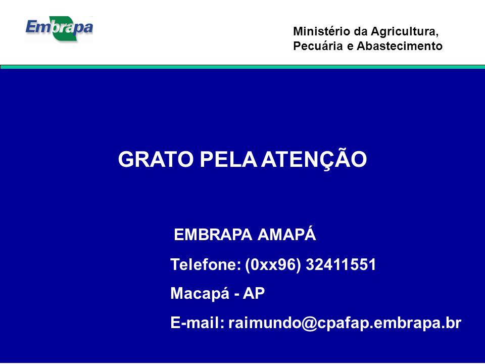 GRATO PELA ATENÇÃO EMBRAPA AMAPÁ Telefone: (0xx96) 32411551
