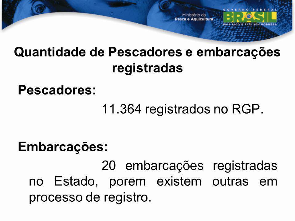 Quantidade de Pescadores e embarcações registradas