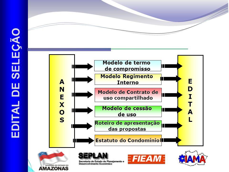 EDITAL DE SELEÇÃO A E N D E I X T O A S L Modelo de termo