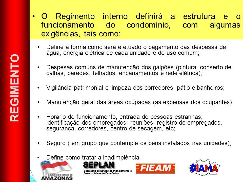 O Regimento interno definirá a estrutura e o funcionamento do condomínio, com algumas exigências, tais como: