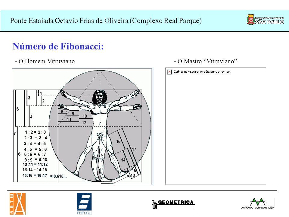 Número de Fibonacci: - O Homem Vitruviano - O Mastro Vitruviano