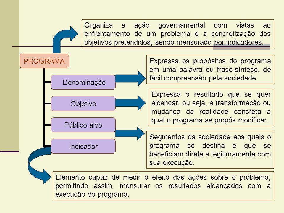 Organiza a ação governamental com vistas ao enfrentamento de um problema e à concretização dos objetivos pretendidos, sendo mensurado por indicadores.