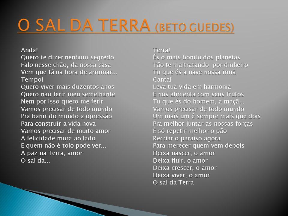 O SAL DA TERRA (BETO GUEDES)