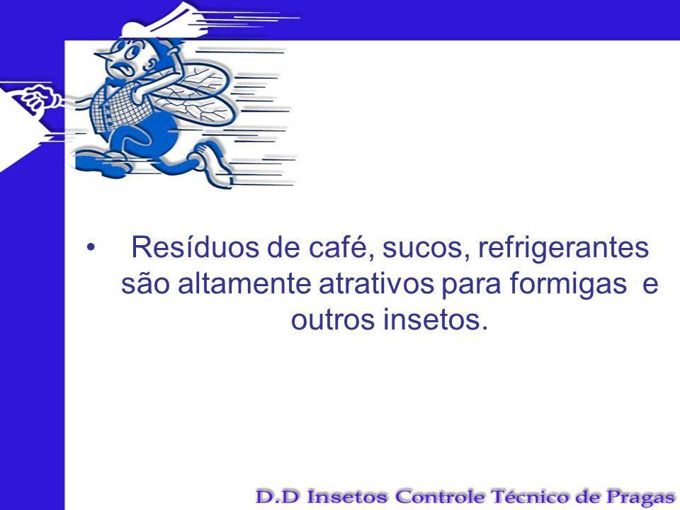Resíduos de café, sucos, refrigerantes são altamente atrativos para formigas e outros insetos.