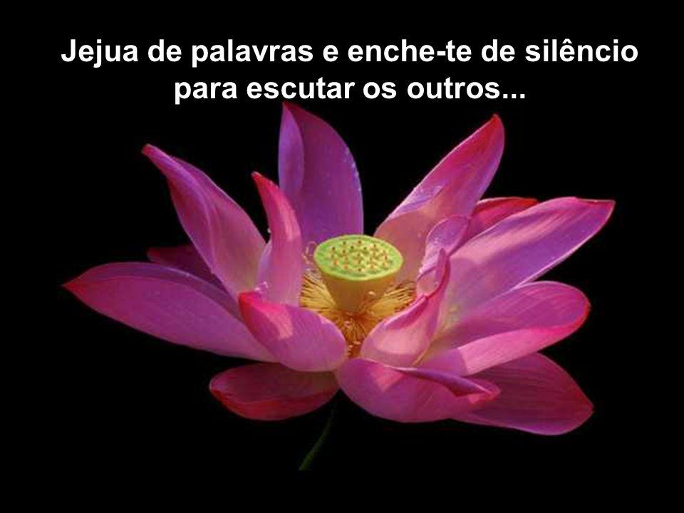 Jejua de palavras e enche-te de silêncio para escutar os outros...