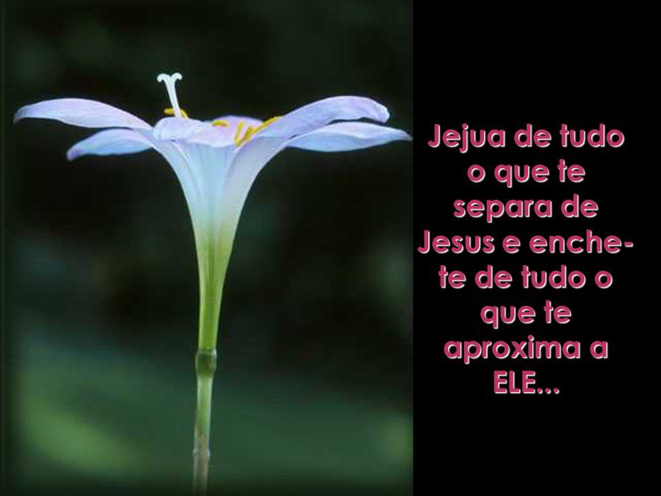 Jejua de tudo o que te separa de Jesus e enche-te de tudo o que te aproxima a ELE...