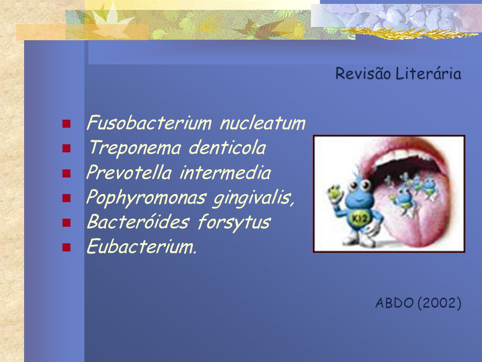Fusobacterium nucleatum Treponema denticola Prevotella intermedia