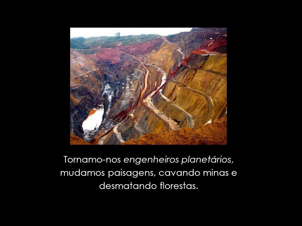 Tornamo-nos engenheiros planetários, mudamos paisagens, cavando minas e desmatando florestas.