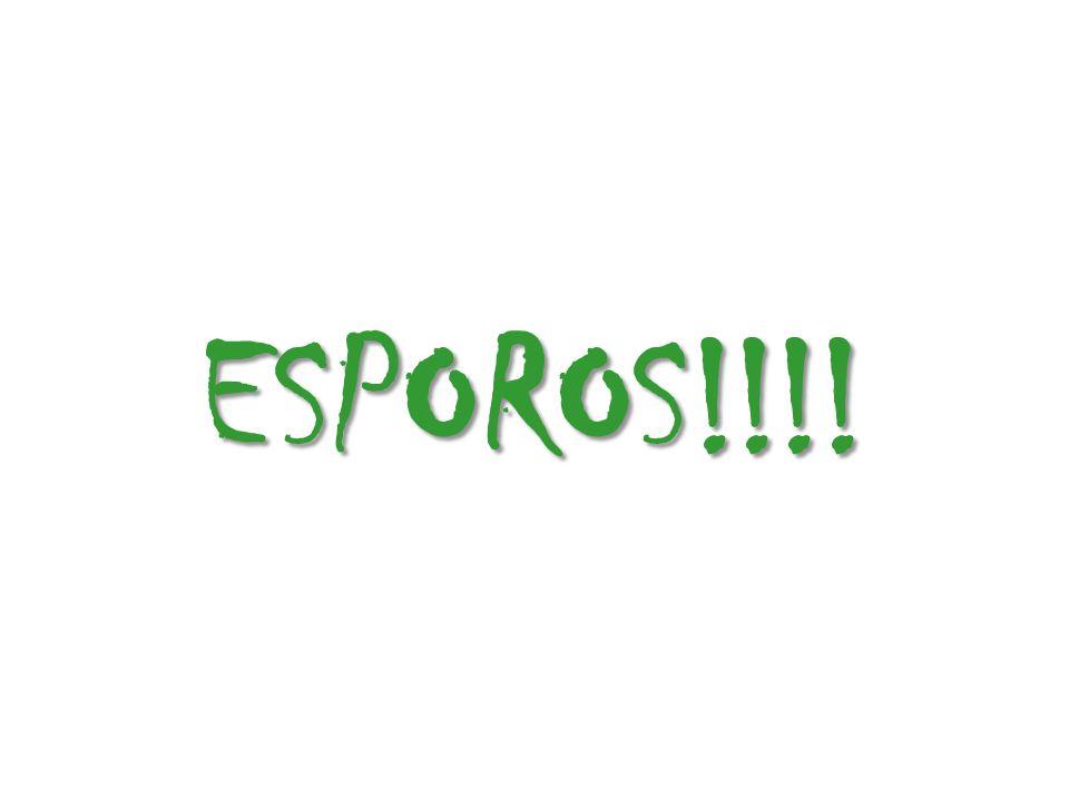 ESPOROS!!!!