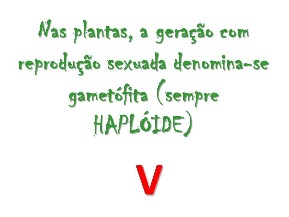 Nas plantas, a geração com reprodução sexuada denomina-se gametófita (sempre HAPLÓIDE)