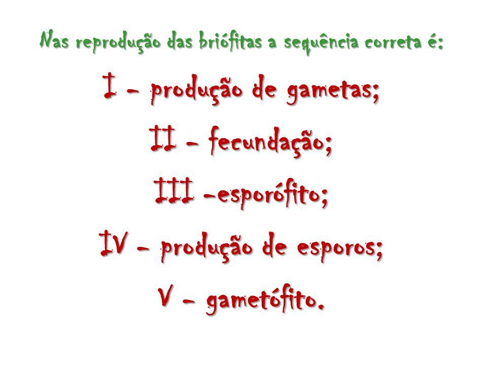 I - produção de gametas; II - fecundação; III -esporófito;