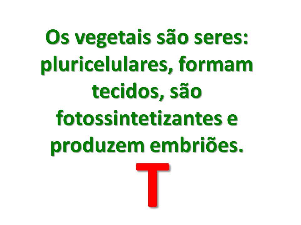 Os vegetais são seres: pluricelulares, formam tecidos, são fotossintetizantes e produzem embriões.