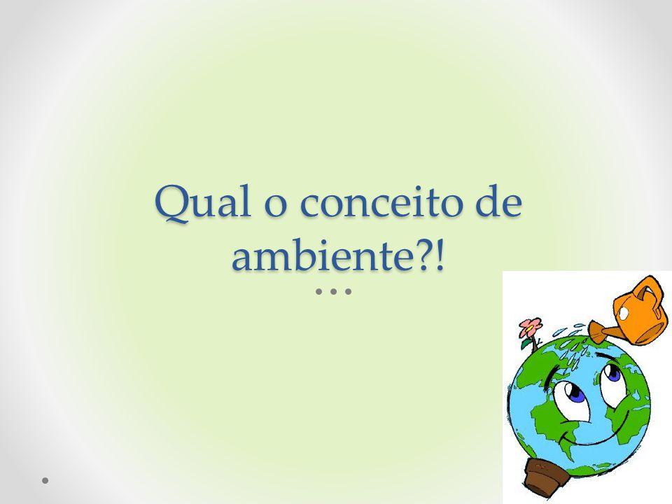 Qual o conceito de ambiente !
