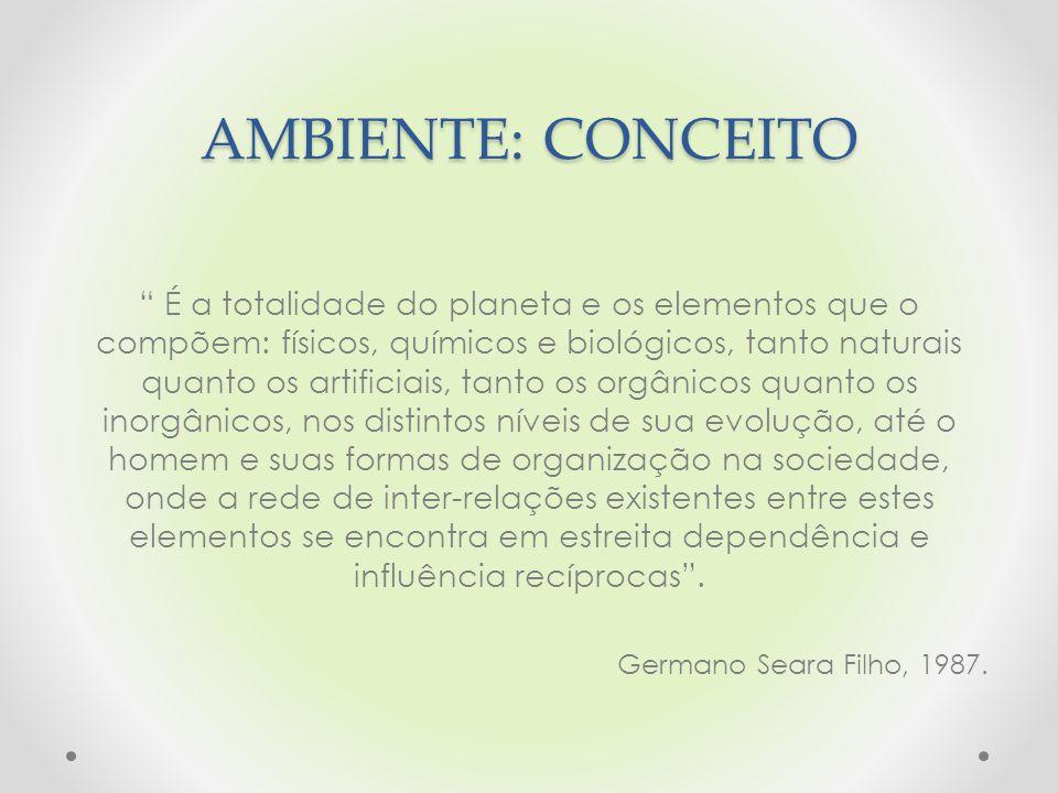AMBIENTE: CONCEITO