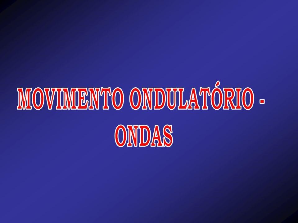 MOVIMENTO ONDULATÓRIO -