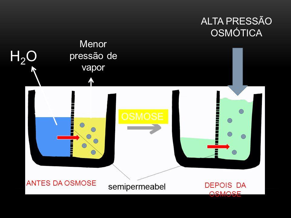 H2O ALTA PRESSÃO OSMÓTICA Menor pressão de vapor OSMOSE