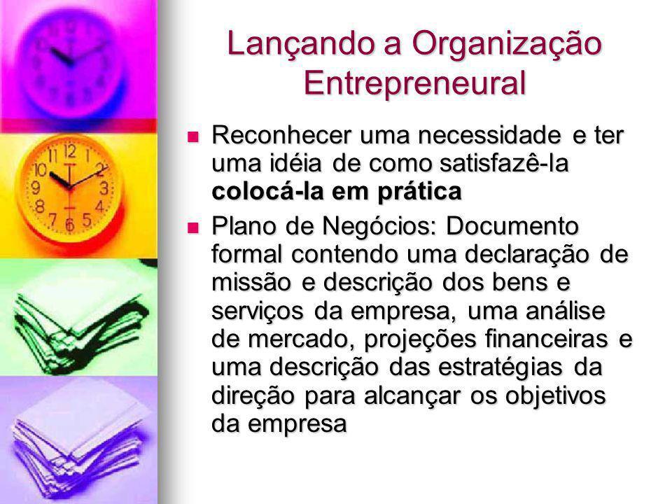 Lançando a Organização Entrepreneural