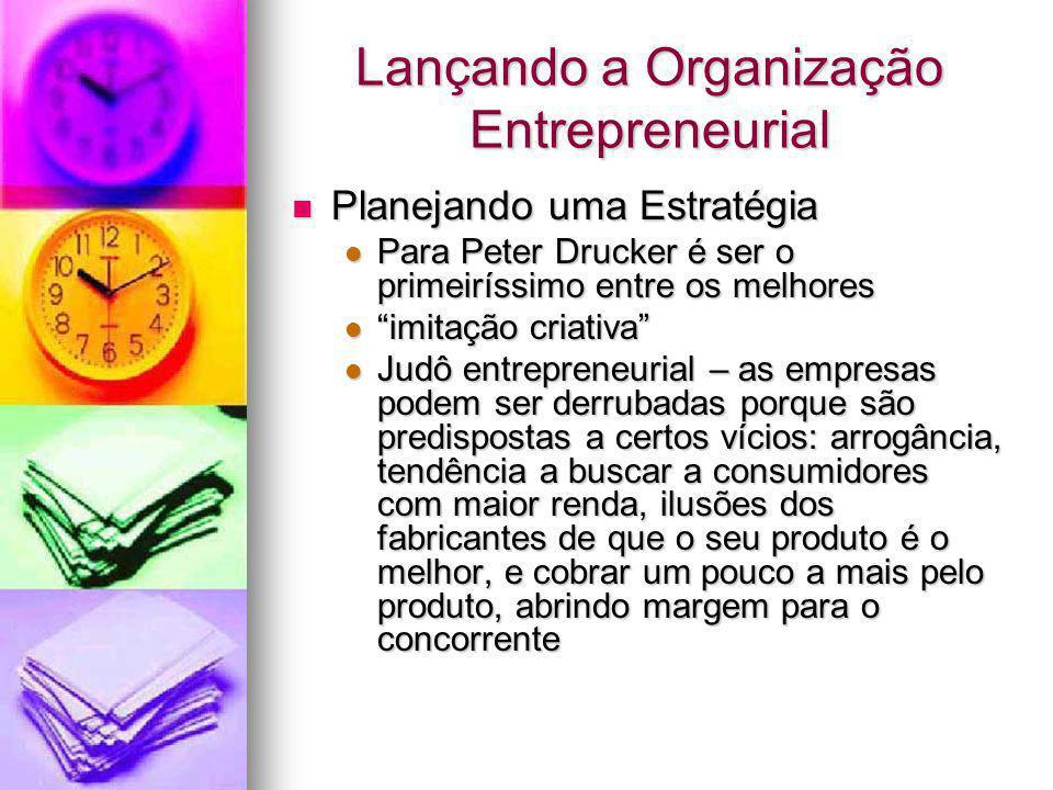 Lançando a Organização Entrepreneurial