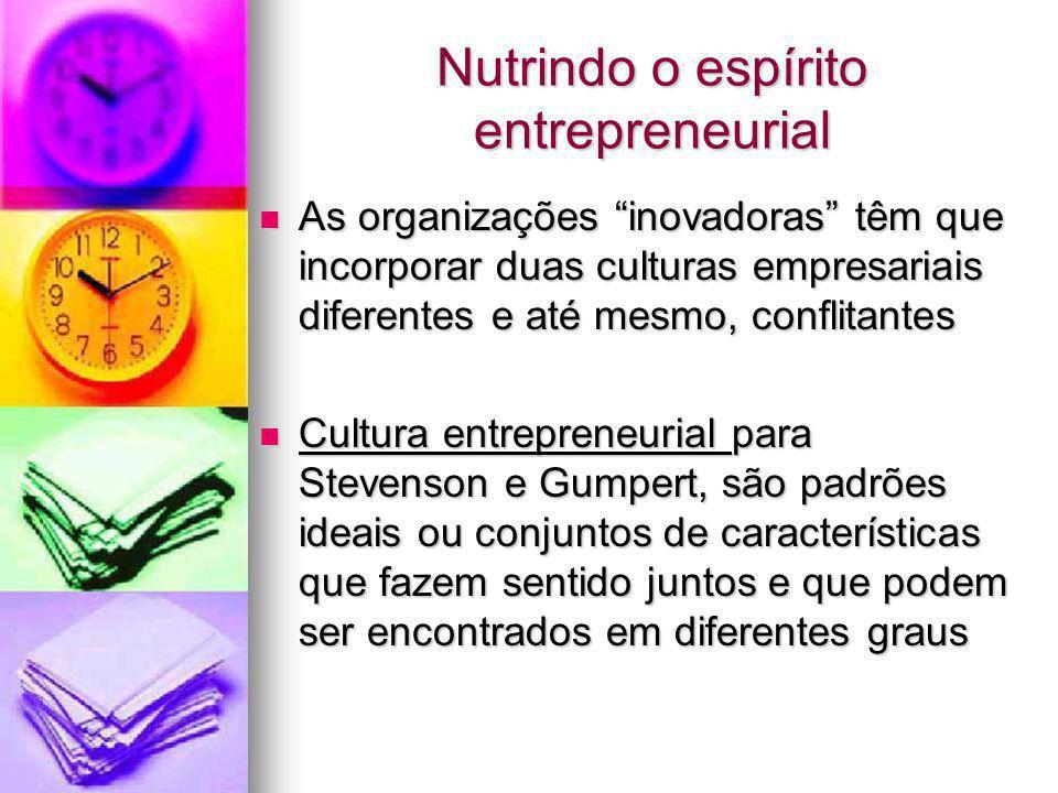 Nutrindo o espírito entrepreneurial