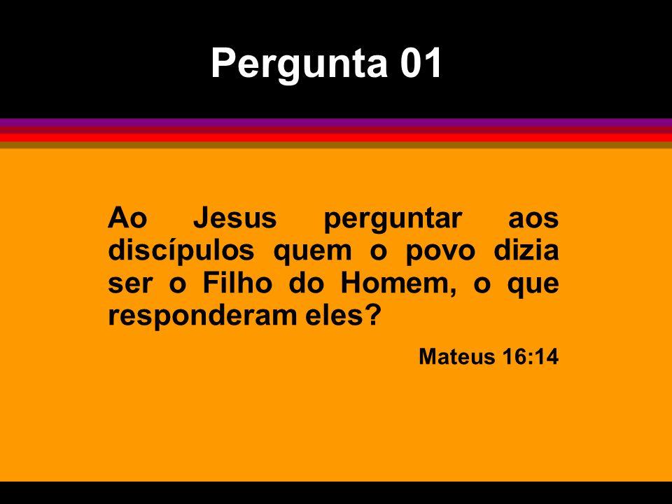 Pergunta 01 Ao Jesus perguntar aos discípulos quem o povo dizia ser o Filho do Homem, o que responderam eles