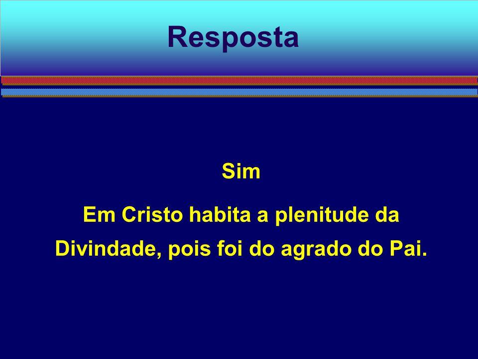 Em Cristo habita a plenitude da Divindade, pois foi do agrado do Pai.