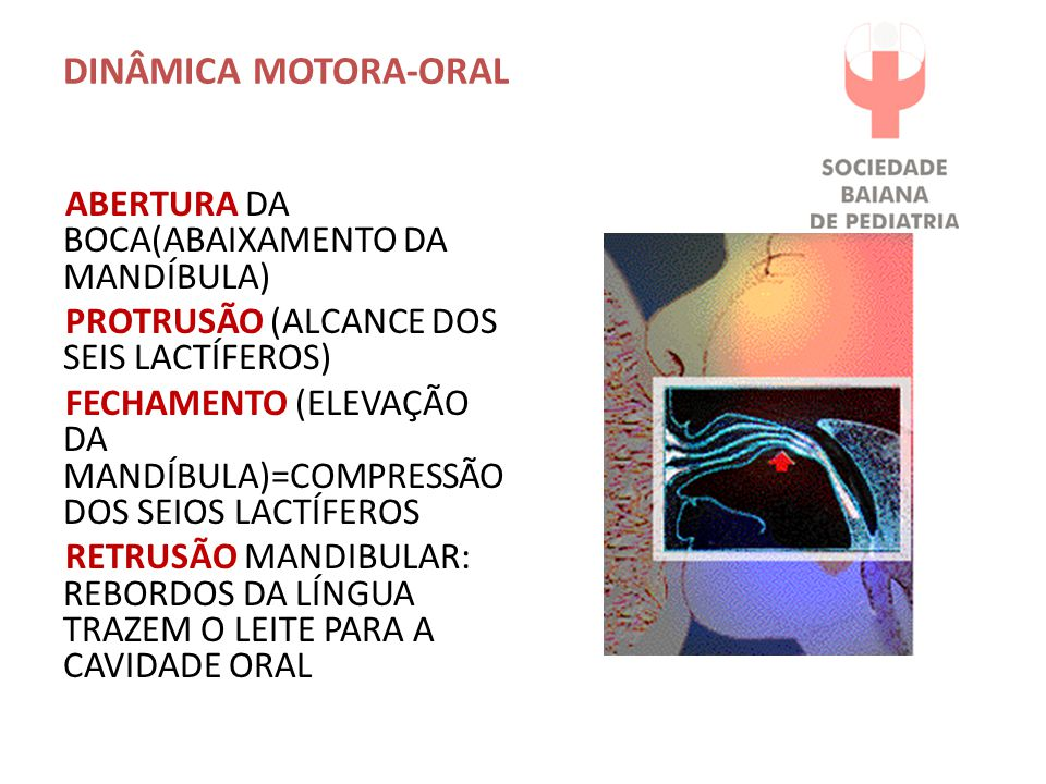 DINÂMICA MOTORA-ORAL