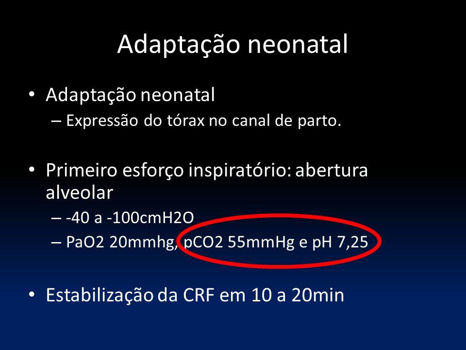 Adaptação neonatal Adaptação neonatal