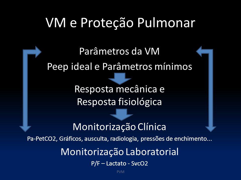 VM e Proteção Pulmonar Parâmetros da VM