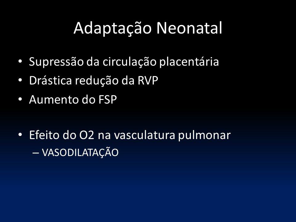 Adaptação Neonatal Supressão da circulação placentária